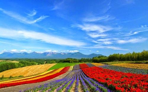 Hokkaido (Japan)